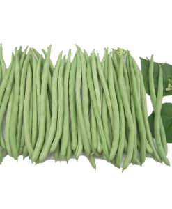 french bean flower best soon huat seeds malaysia