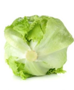 iceberg lettuce seeds soon huat seeds