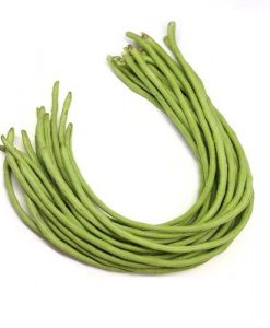 yard long beans p317 soon huat seeds