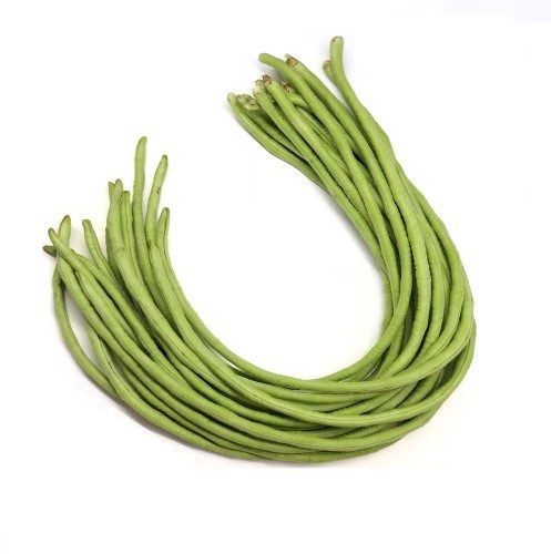 long bean seeds P317