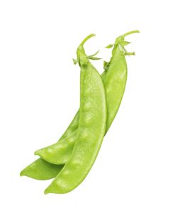 snow pea seeds online malaysia soon huat seeds