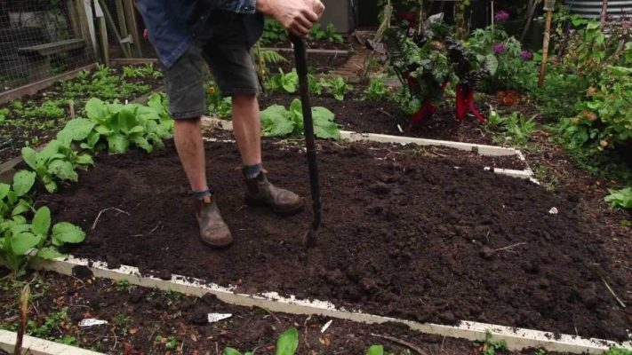Digging Your Raised Bed