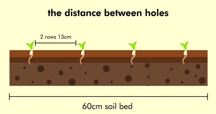the distance between holes