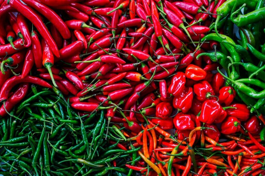 Different types of chilies that grow fast