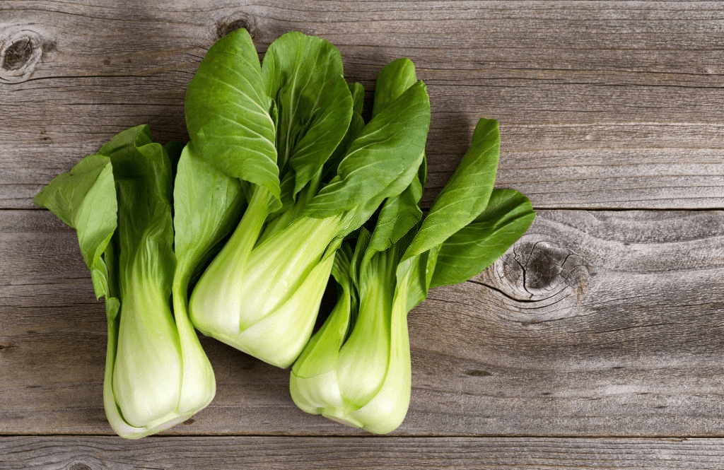 Easy salad greens to grow: Bok choy