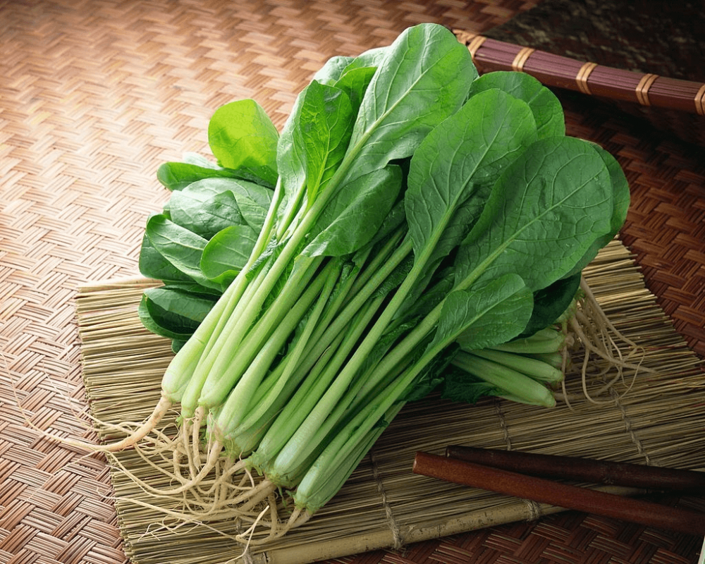 Easy salad greens to grow: Komatsuna