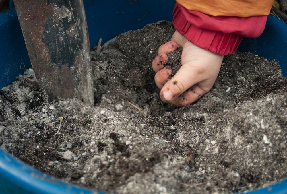 testing soil to plant vegetable seeds
