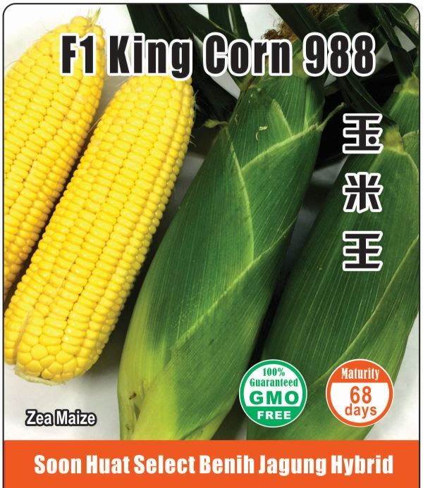 Soon Huat 988 F1 King Corn seeds